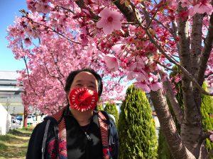 路地で見つけた今年の桜&広規マスク(1)