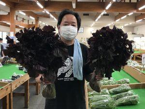 道の駅で赤紫蘇を二束を買う。