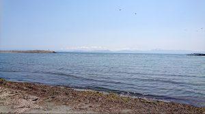 陸奥湾ののどかな風景。遠くに見えるかもめと、向こう岸は下北半島。