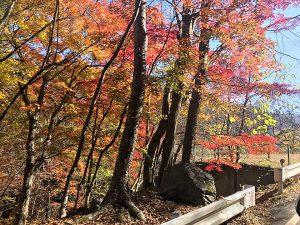 昇仙峡に向かう道の紅葉