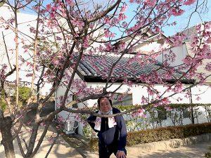 さくら開花宣言が出て、色づく街のさくらから山桜まで今年は長く桜が見られそうですね。
